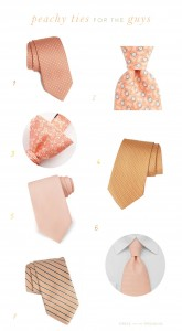 Peach Ties For Grooms and Groomsmen