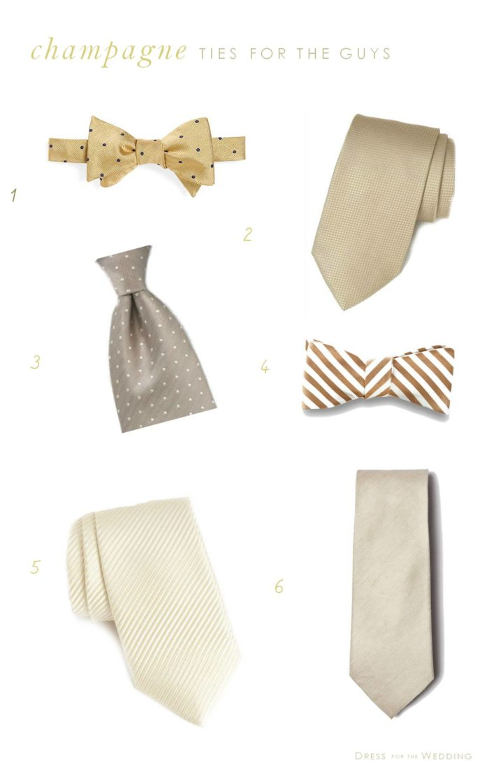 Champagne Ties for the Guys