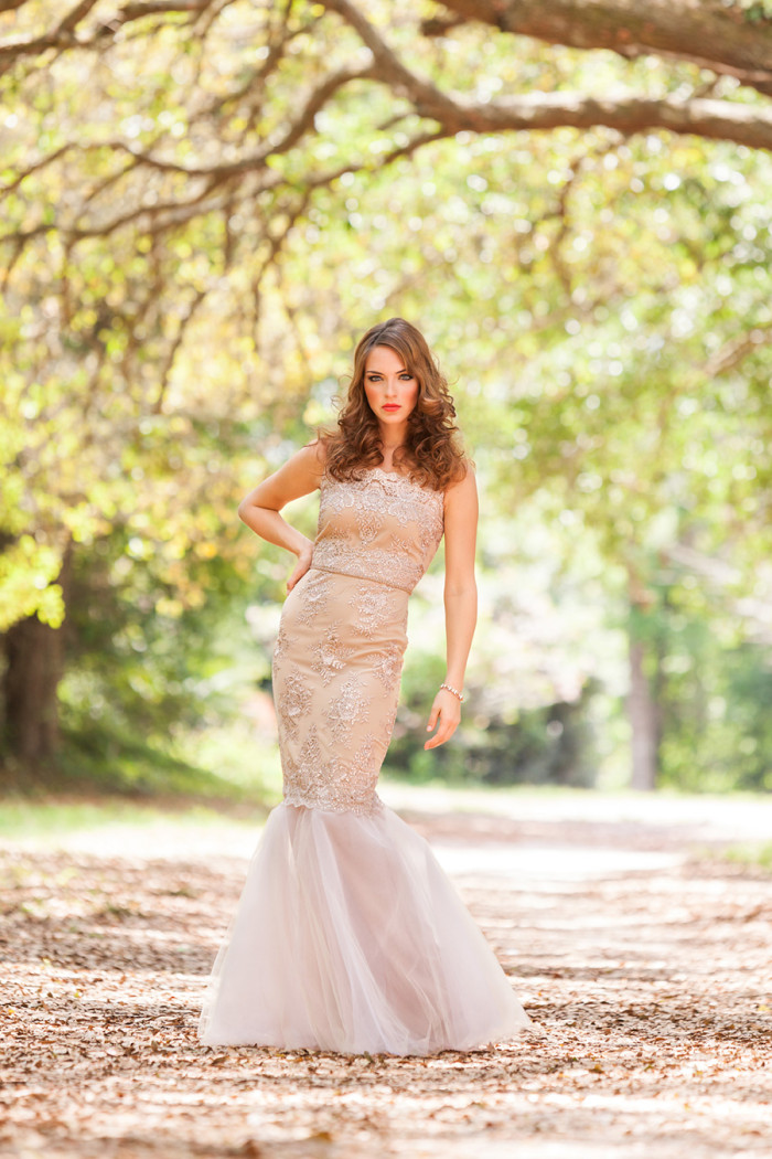Champagne lace gown | Hundreds of Moments Photography  see more:  http://dressforthewedding.com/