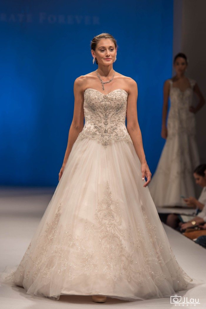 New Wedding Dresses from Casablanca Bridal! | Dress for the Wedding