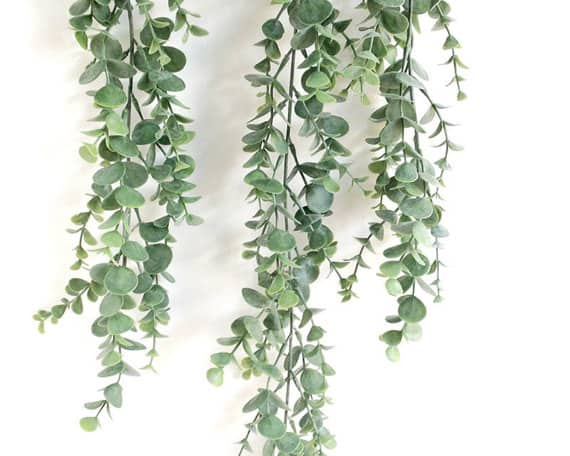 eucalyptus garland for a wedding